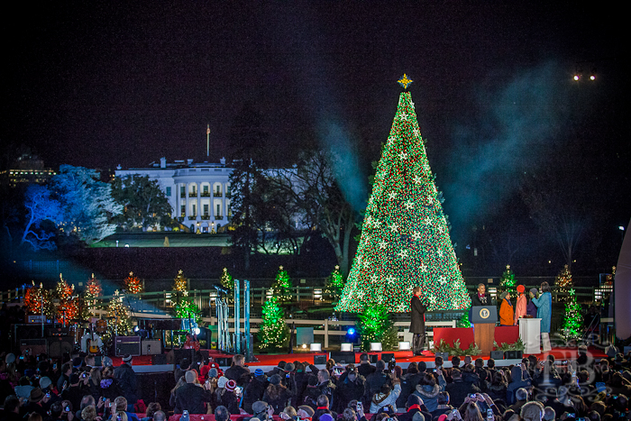 Which President Banned Christmas Trees From The White House.Today In U S History President Trump News Is The Official